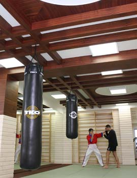 Alteos Kick-boxing2.jpg